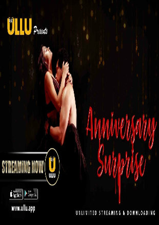The Anniversary Surprise 2019 WEB-DL 500Mb Hindi WEB Series 720p Download
