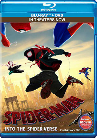 Spider-Man Into the Spider-Verse 2018 BRRip  English 480p ESub-350MB