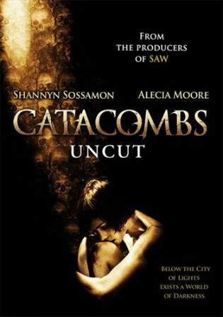 Catacombs 2007 WEBRip 450MB UNRATED Hindi Dual Audio 480p ESub Watch Online Full Movie Download bolly4u