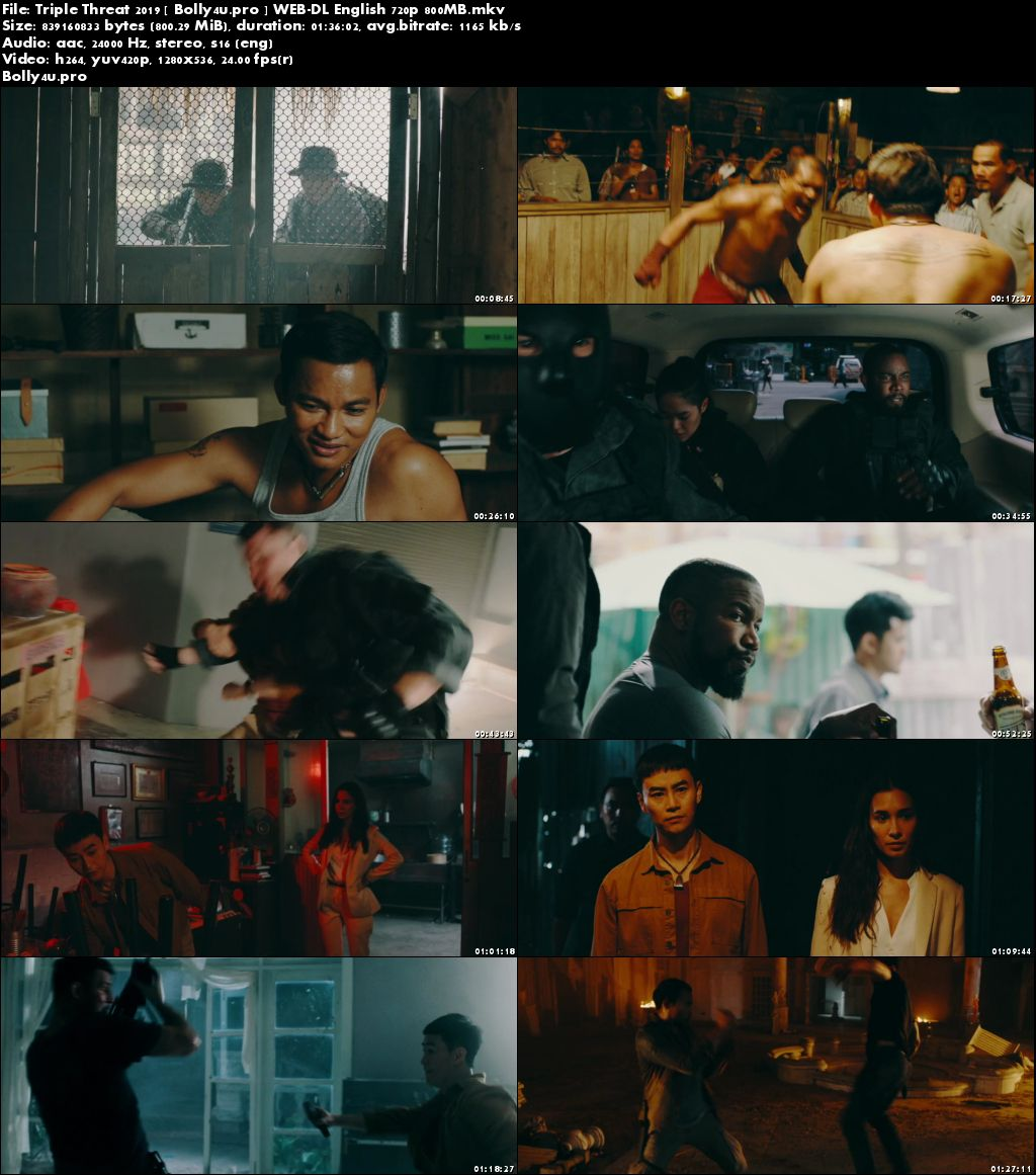 Triple Threat 2019 WEB-DL 300MB English 480p Download