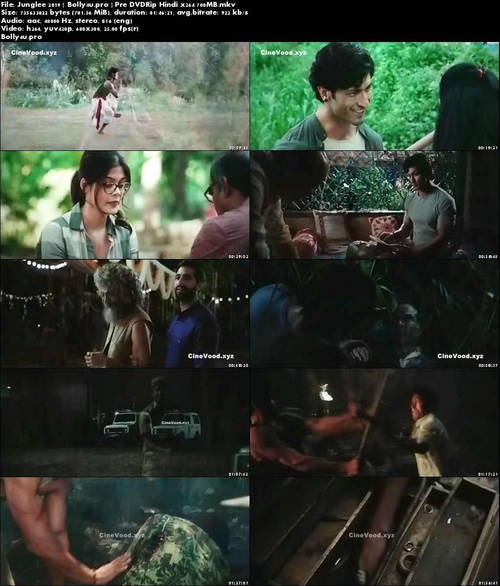 Junglee 2019 Pre DVDRip 300MB Full Hindi Movie Download 480p