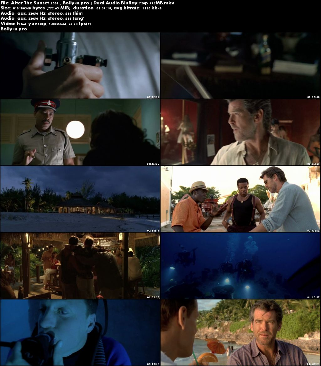 After The Sunset 2004 BluRay 750Mb Hindi Dual Audio 720p Download