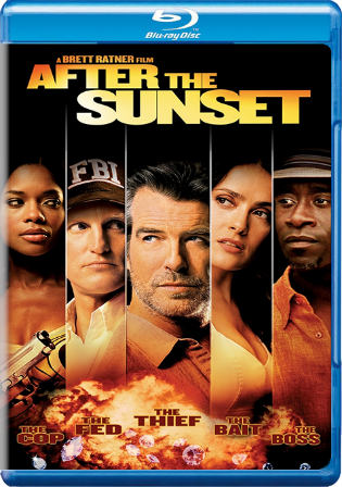 After The Sunset 2004 BluRay 300Mb Hindi Dual Audio 480p Watch Online Full Movie Download bolly4u