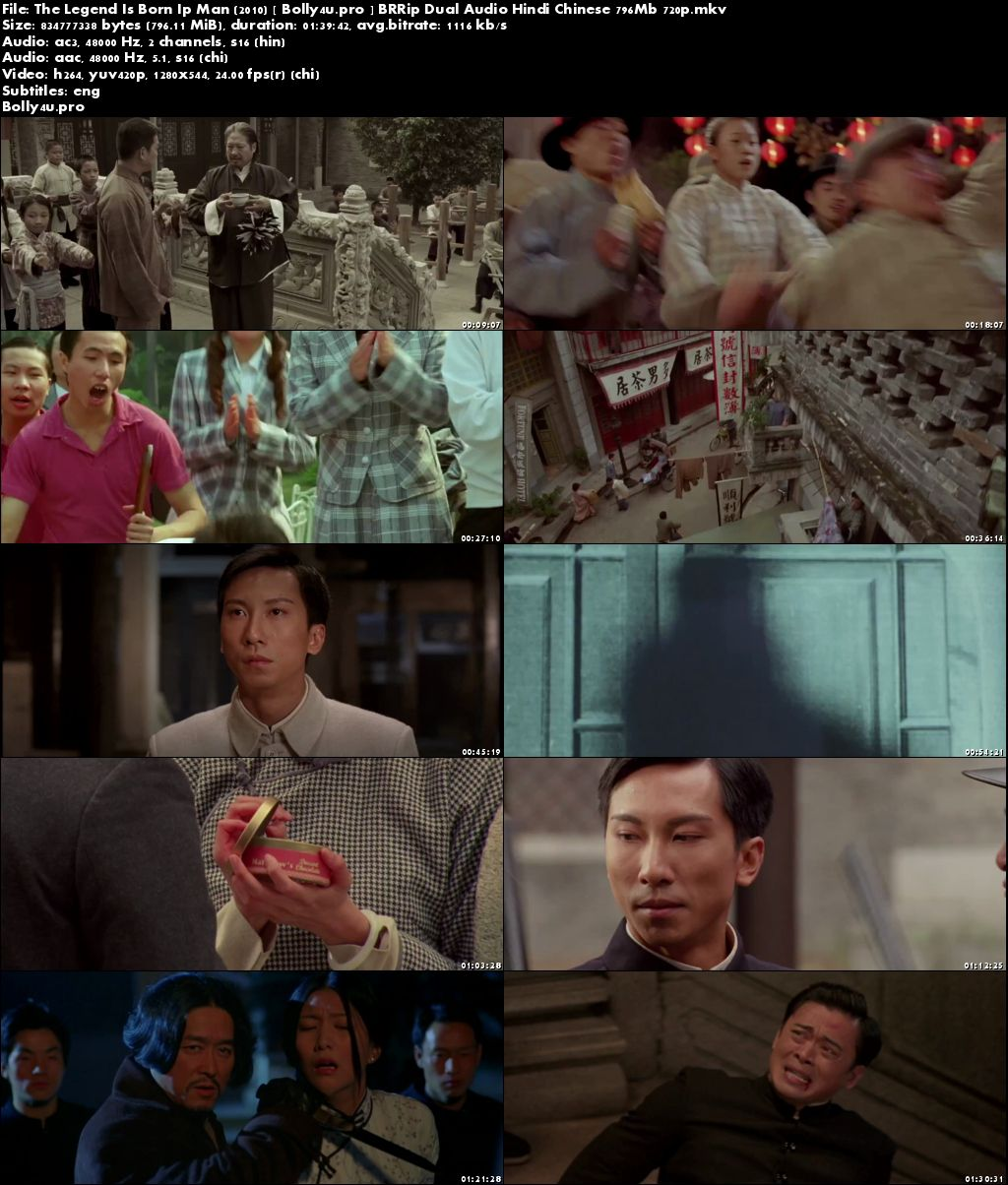 The Legend Is Born Ip Man 2010 BRRip 300MB Hindi Dual Audio 480p Download