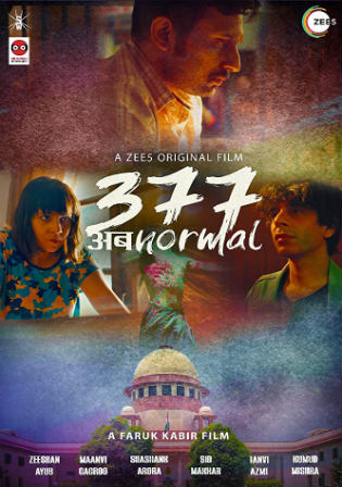 377 Ab Normal 2019 WEB-DL 300MB Hindi 480p ESub Watch Online Free Download bolly4u