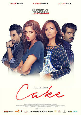 Cake 2018 WEB-DL 350Mb Urdu 480p