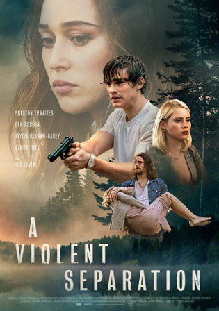 A Violent Separation 2019 WEB-DL 300MB English 480p ESub Watch Online Full movie Download bolly4u