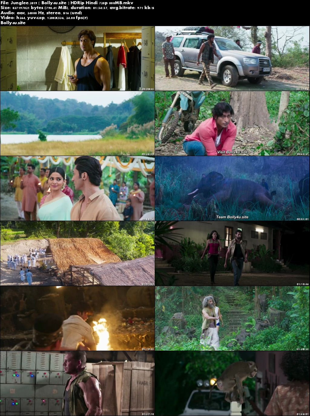 Junglee 2019 HDRip 300MB Hindi 480p Download
