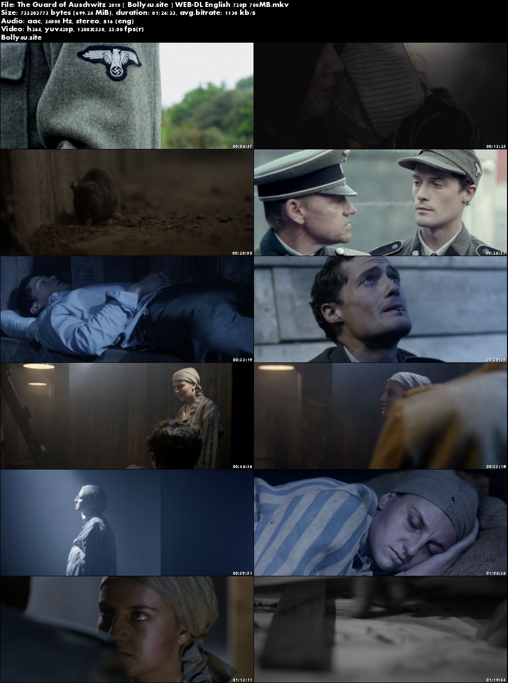 The Guard of Auschwitz 2018 WEB-DL 250MB English 480p Download