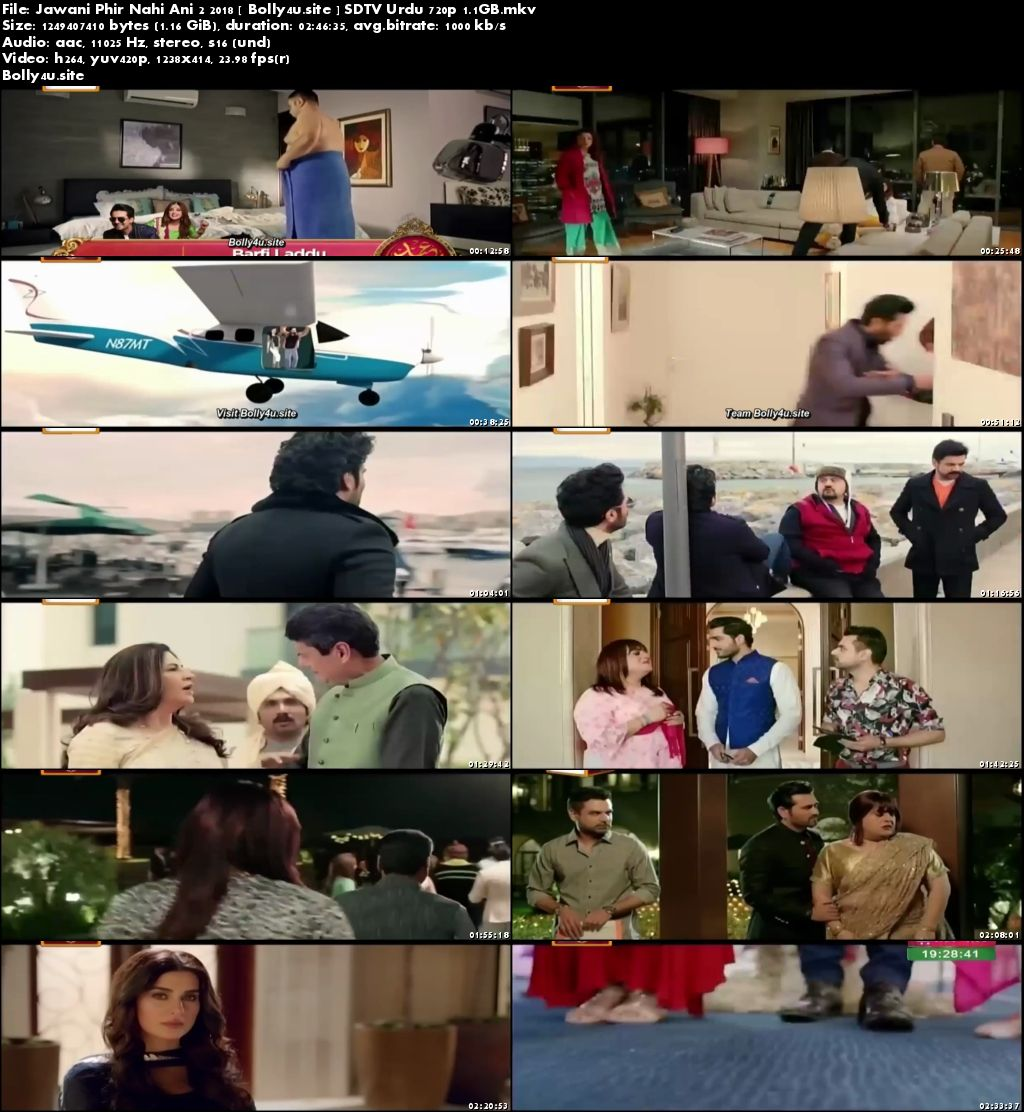 Jawani Phir Nahi Ani 2 2018 SDTV 450MB Urdu 480p Download