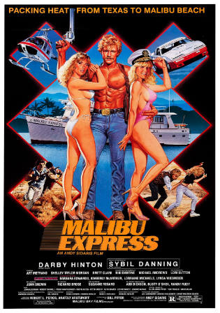 Malibu Express 1985 BRRip 950MB Hindi Dual Audio 720p