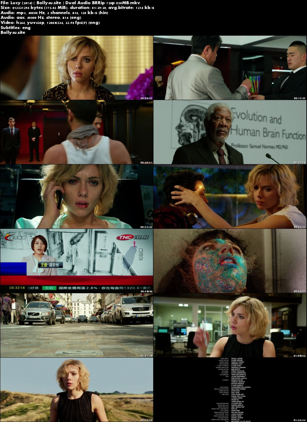 Lucy 2014 BRRip 300MB Hindi Dual Audio 480p ESub Download