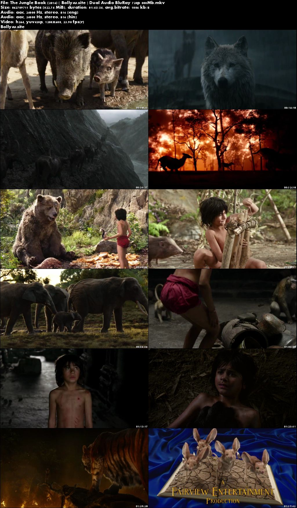 The Jungle Book 2016 BluRay 800Mb Hindi Dual Audio 720p Download