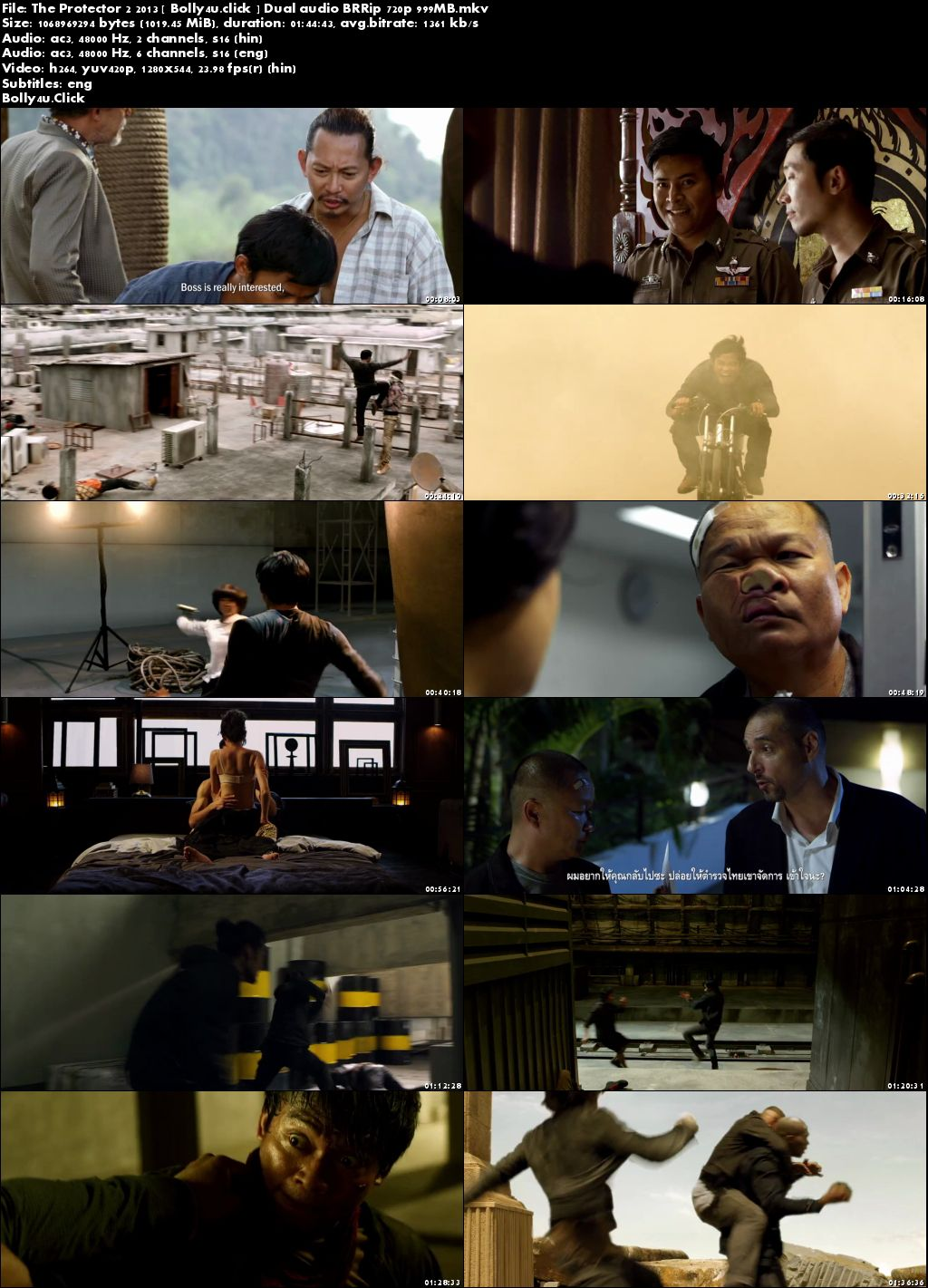 The Protector 2 2013 BluRay 999Mb Hindi Dual Audio 720p Download