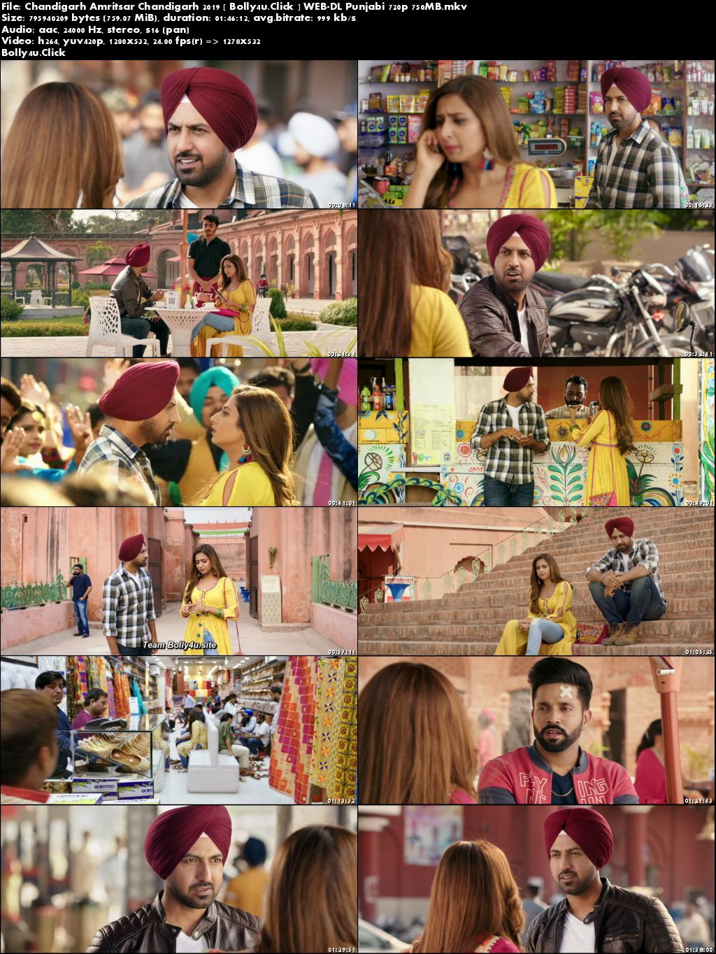 Chandigarh Amritsar Chandigarh 2019 WEB-DL 300MB Punjabi 480p Download