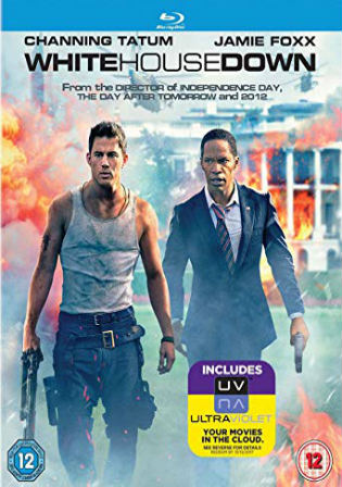 White House Down 2013 BRRip 450Mb Hindi Dual Audio ORG 480p ESub