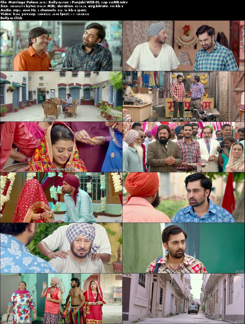 Marriage Palace 2018 WEB-DL 400Mb Punjabi 480p Download