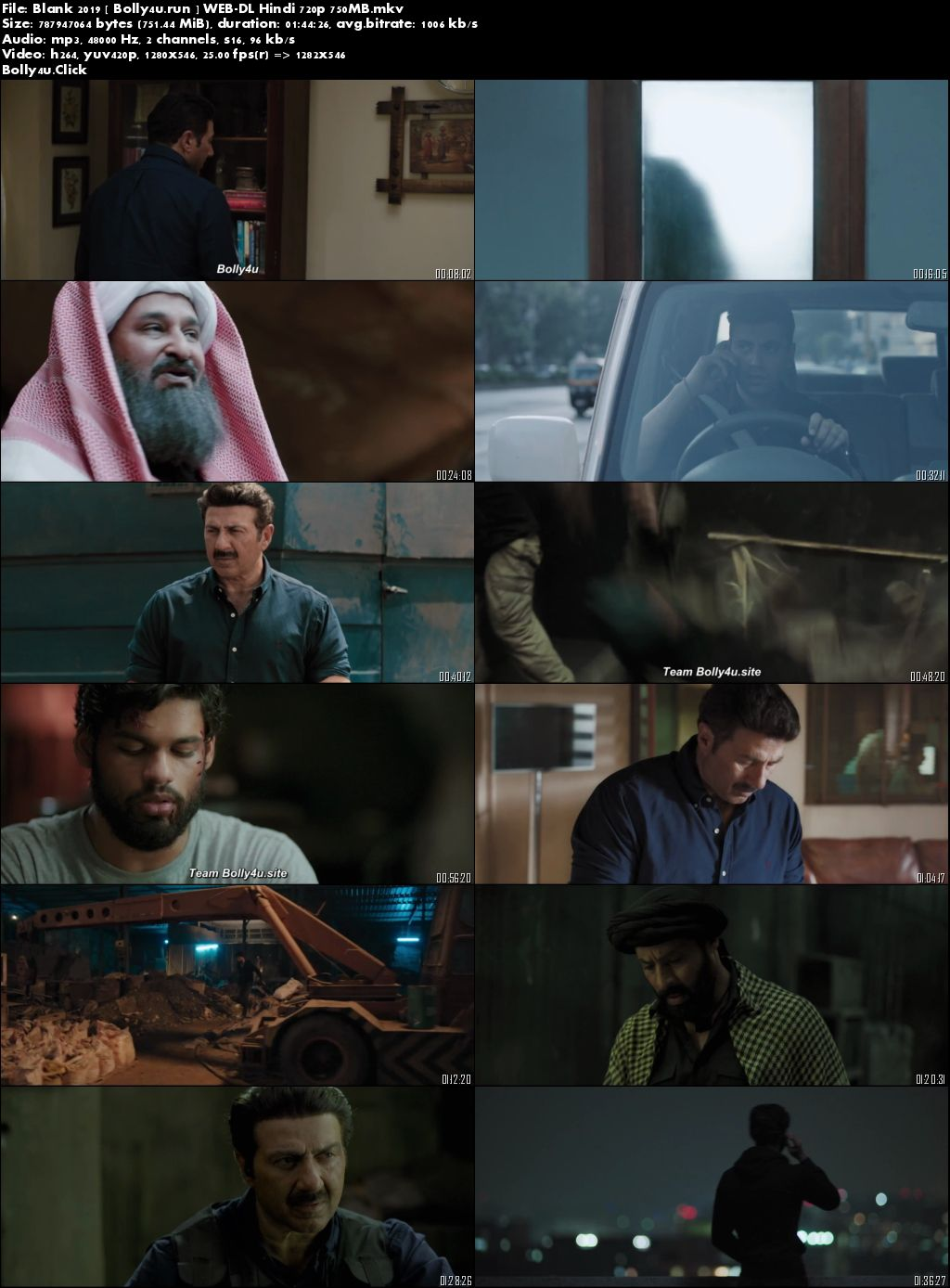 Blank 2019 WEB-DL 300MB Full Hindi Movie Download 480p