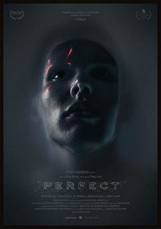 Perfect 2019 HDRip 280Mb English 480p Watch Online Full Movie Download bolly4u