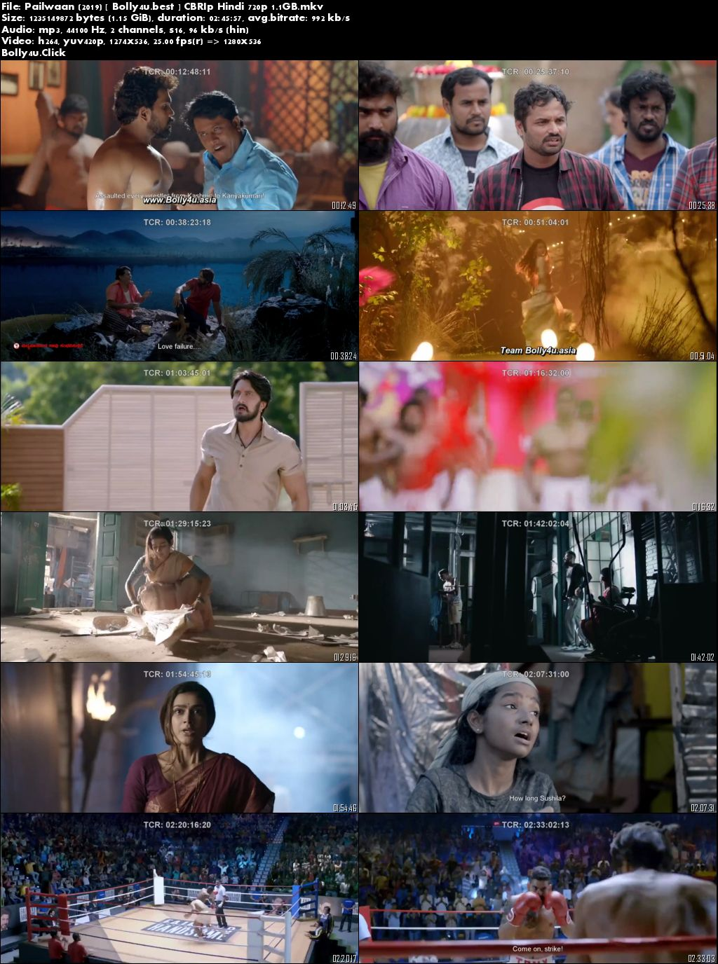 Pailwaan 2019 CBRip 500MB Full Hindi Movie Download 480p