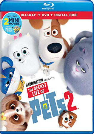 The Secret Life Of Pets 2 2019 BluRay 300MB Hindi Dual Audio ORG 480p Watch Online Full Movie Download bolly4u