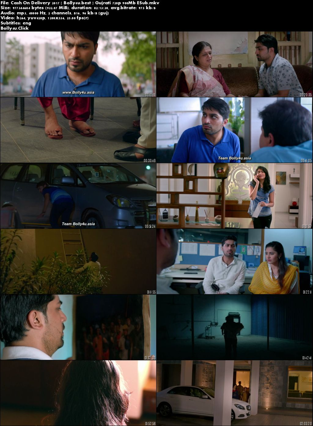 Cash On Delivery 2017 WEB-DL 300Mb Gujrati 480p ESub Download