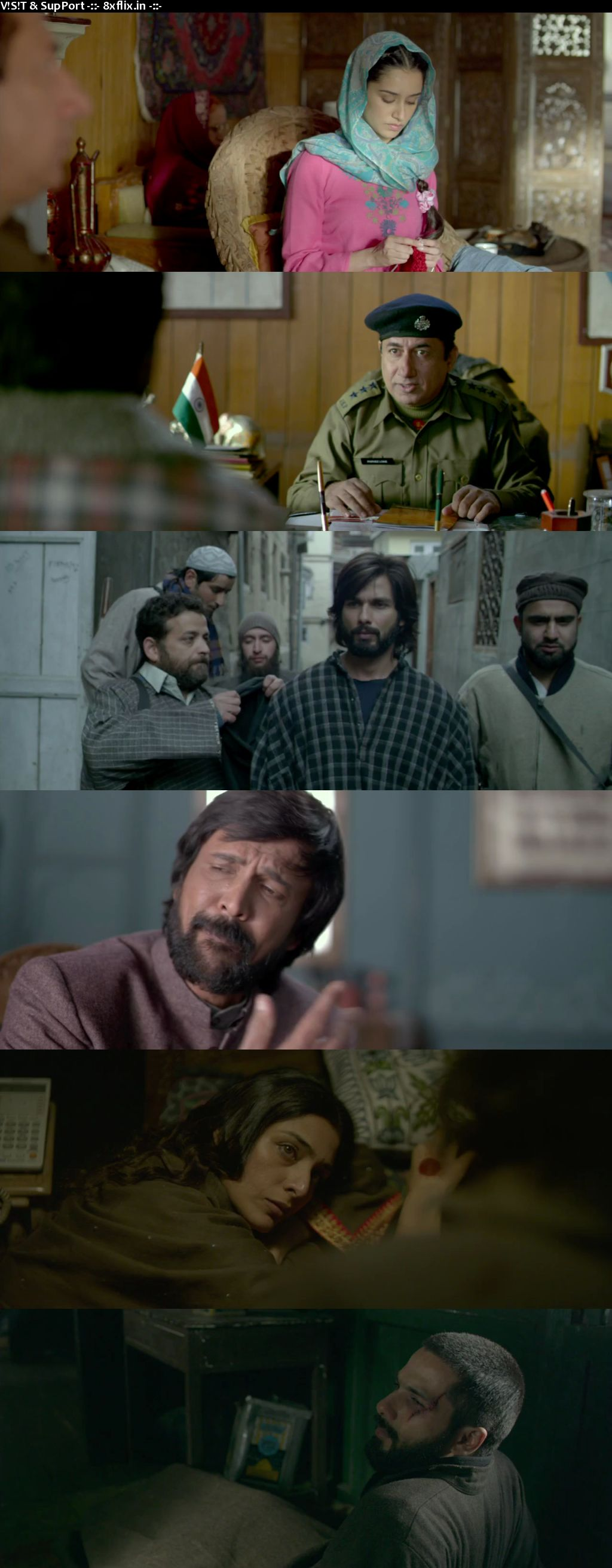 Haider 2014 Full Hindi Movie Download 720p 480p BRRip HD