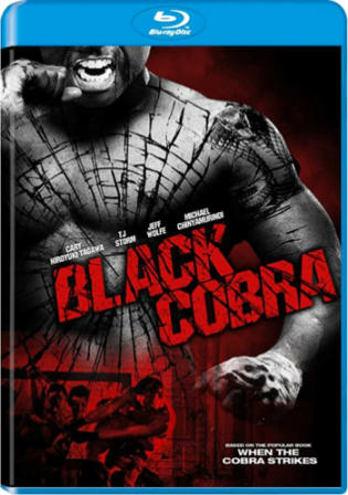 Black Cobra 2012 BluRay 300MB Hindi Dual Audio 480p