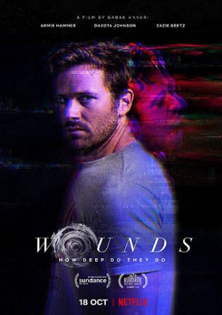 Wounds 2019 BluRay 300Mb Hindi Dual Audio ORG 480p ESub