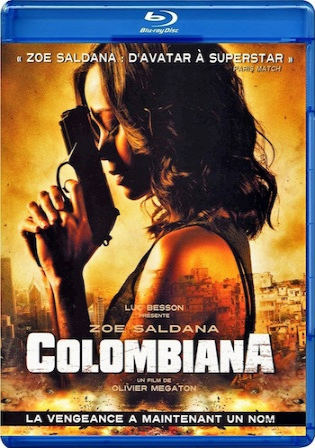 Colombiana 2011 BRRip 300MB Hindi Dual Audio 480p