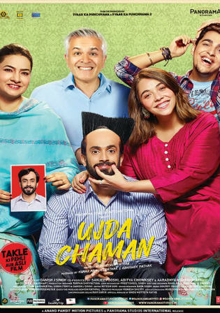 Ujda Chaman 2019 Pre DVDRip 300Mb Full Hindi Movie Download 480p