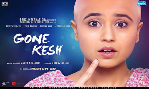 Gone Kesh 2019 WEB-DL 300MB Hindi 480p