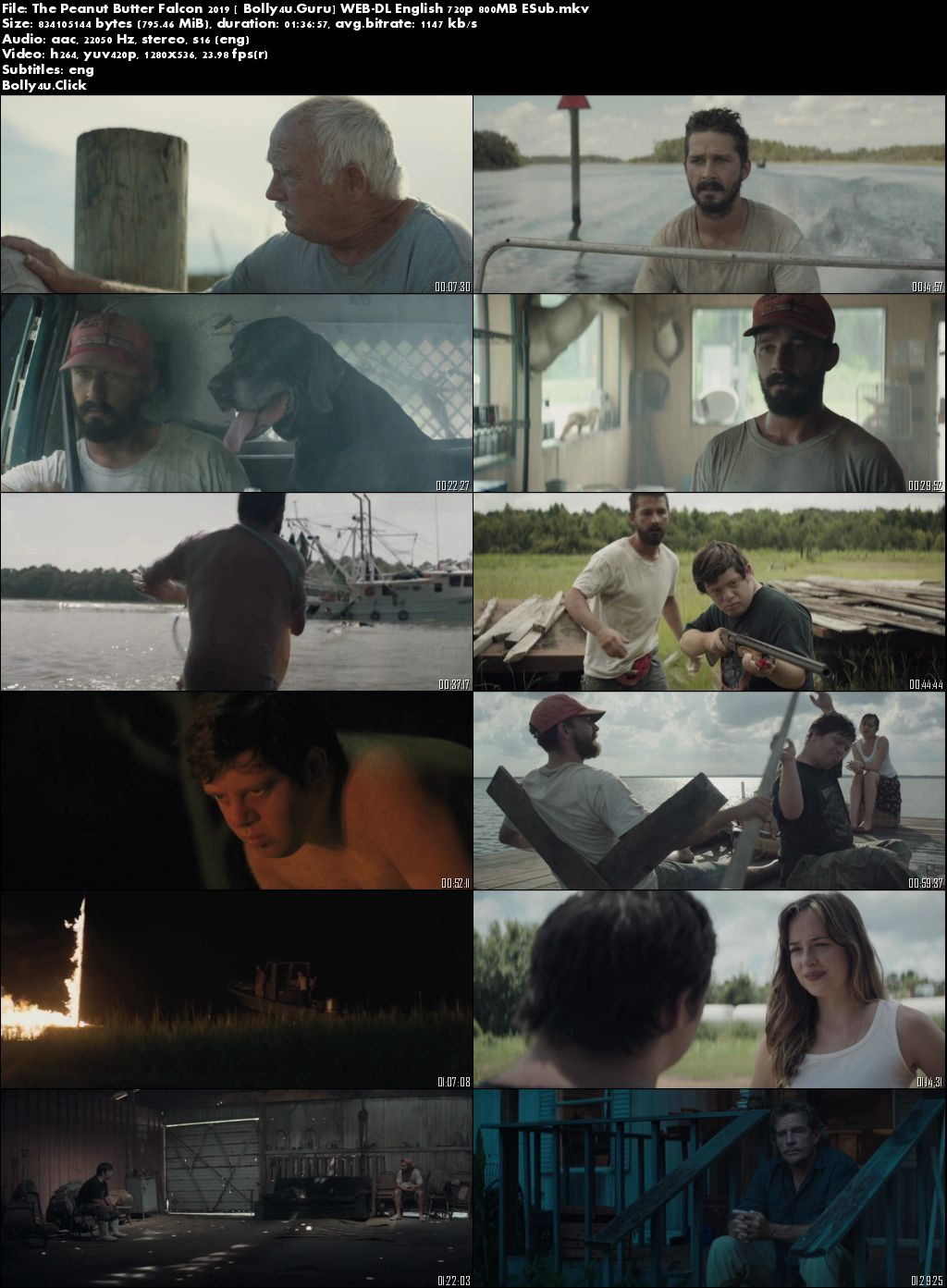 The Peanut Butter Falcon 2019 WEB-DL 300MB English 480p ESub Download