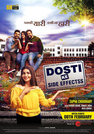 Dosti Ke Side Effects 2019 HDRip 350Mb Full Hindi Movie Download 480p
