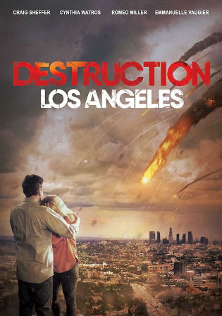 Destruction Los Angeles 2017 WEBRip 300Mb Hindi Dual Audio 480p