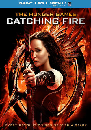 The Hunger Games Catching Fire (2013) BRRip 900Mb Hindi 720p  Dual Audio Download