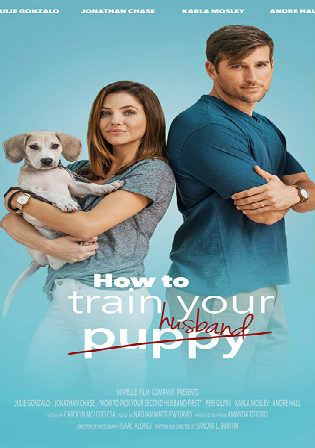 How to Train Your Husband 2017 WEBRip 1GB Hindi Dual Audio 720p