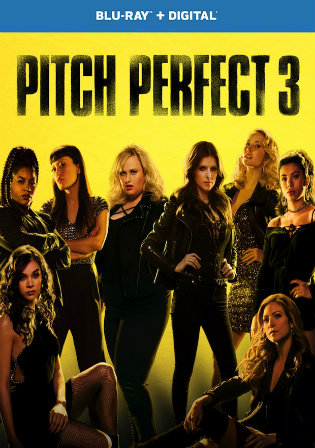 Pitch Perfect 3 2017 BluRay 300MB Hindi Dual Audio 480p