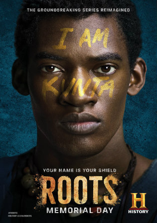 Roots Part 1 2016 BRRip 480p Dual Audio In Hindi 300MB