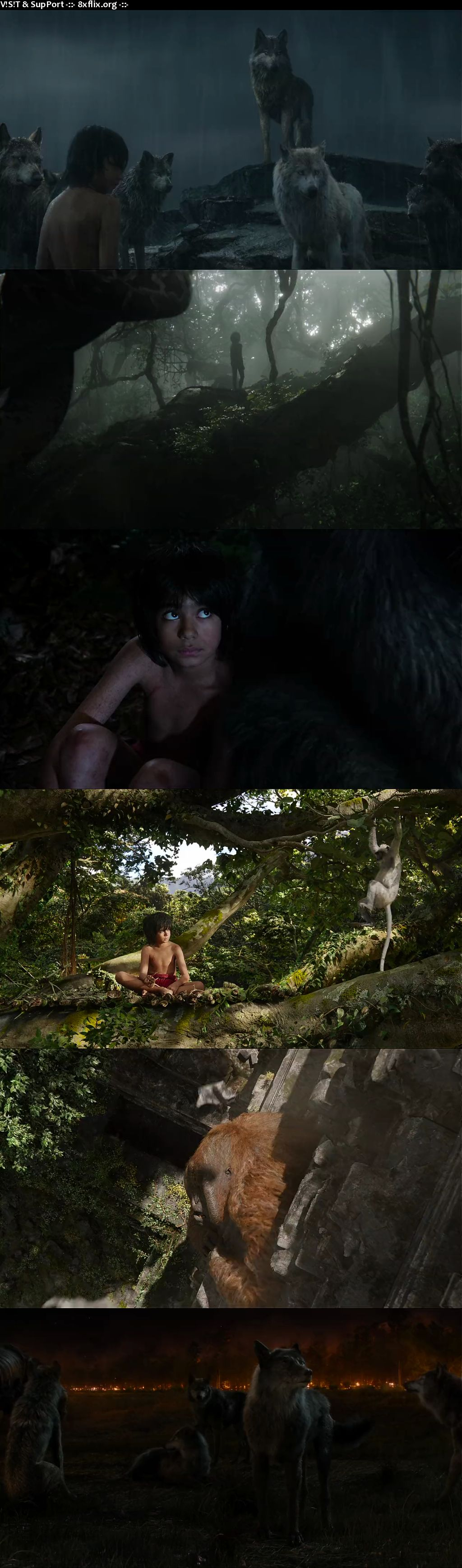 The Jungle Book 2016 Hindi English Dual Audio 720p 480p BluRay