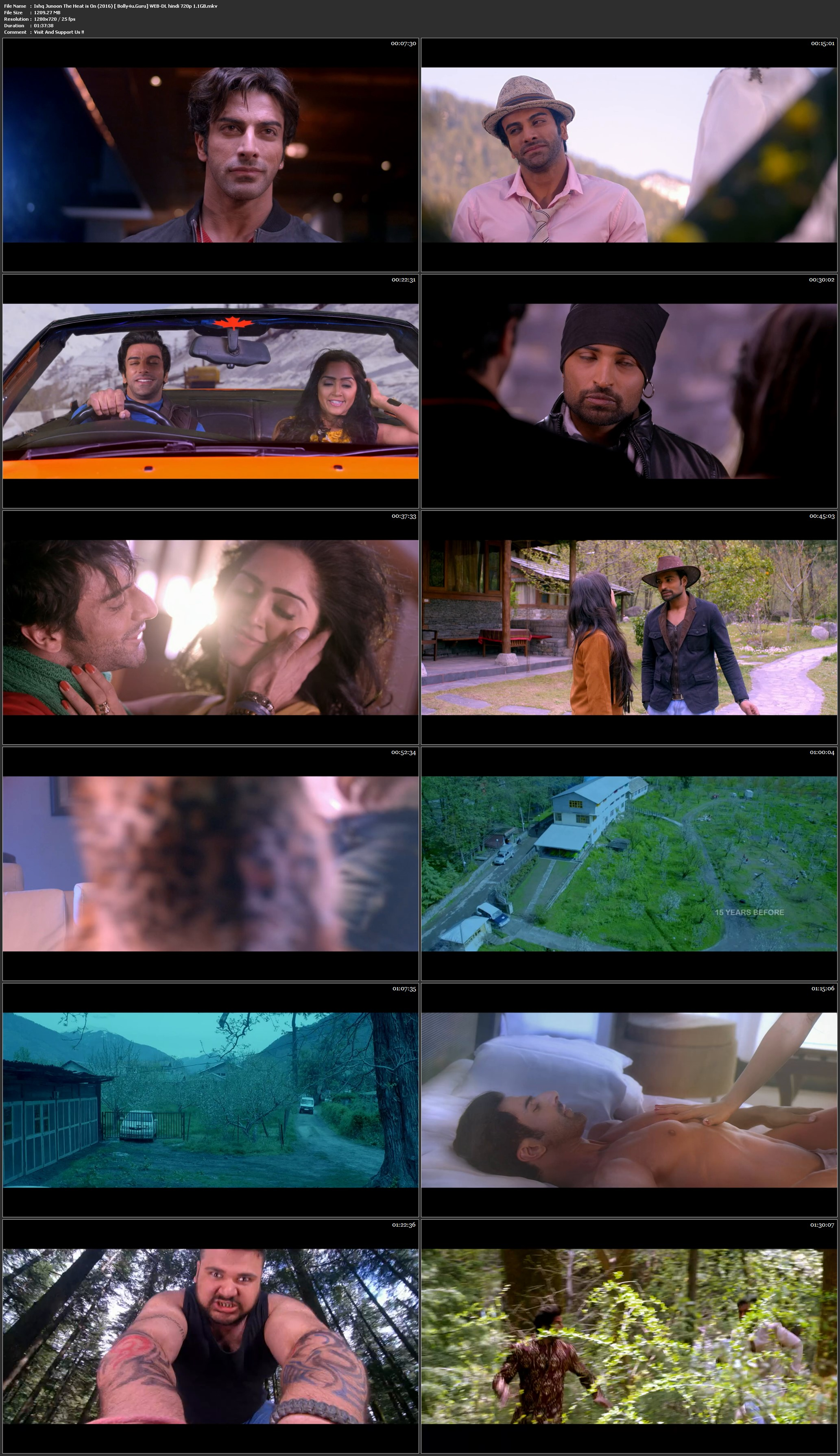 Ishq Junoon The Heat is On 2016 WEB-DL 300Mb Hindi 480p Download