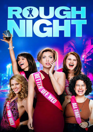 Rough Night 2017 BRRip 300Mb Hindi Dual Audio 480p