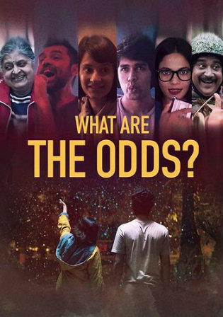 What Are the Odds 2020 WEBRip 300MB Hindi 480p ESub