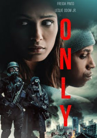 Only 2019 BRRip 750Mb Hindi Dual Audio ORG 720p Watch Online Full Movie Download bolly4u