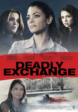 Deadly Exchange 2017 WEB-DL 300MB Hindi Dual Audio 480p