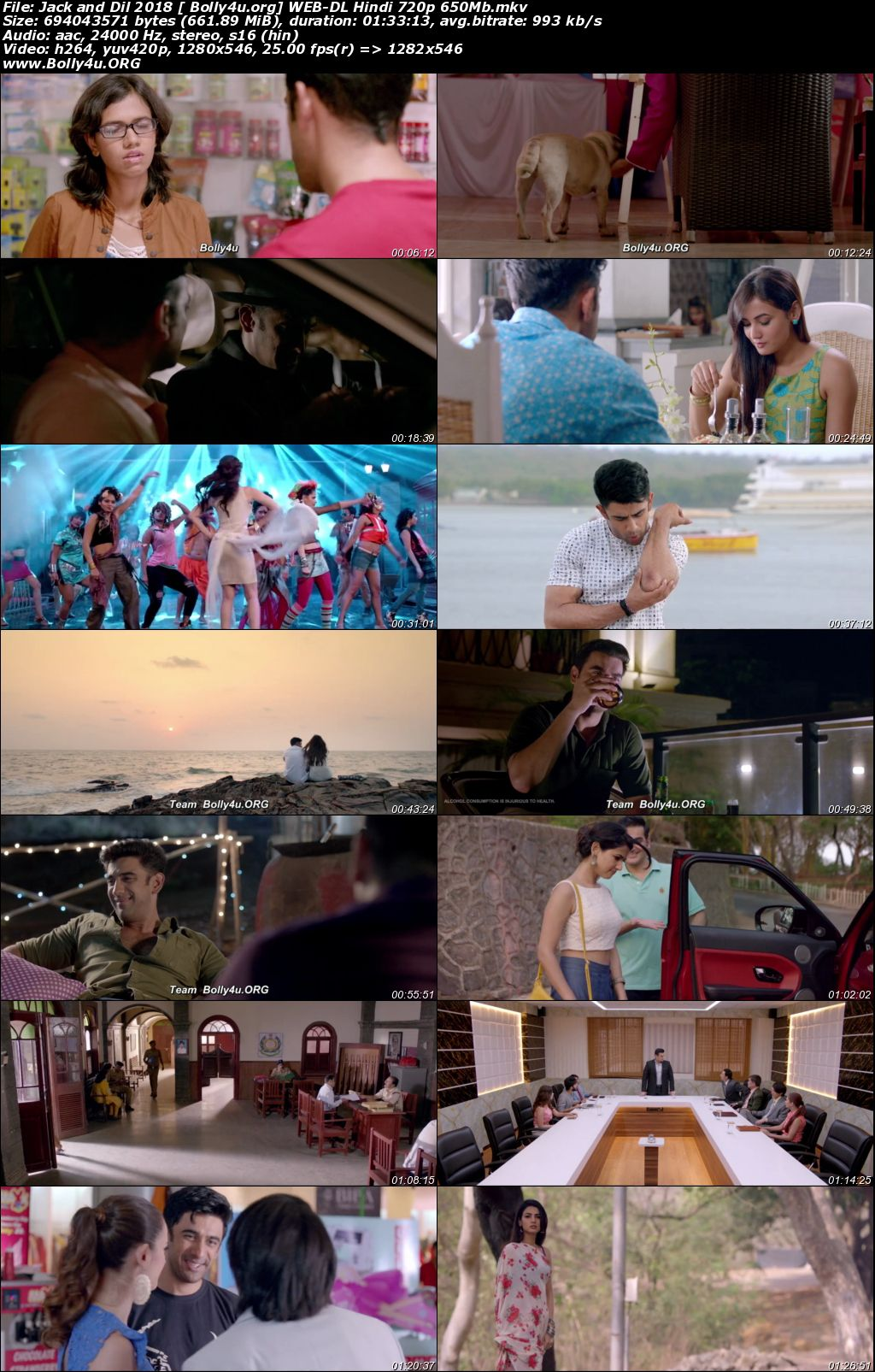 Jack and Dil 2018 WEB-DL 300MB Hindi 480p Download