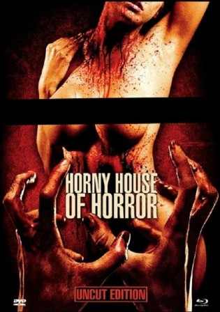 18+ Horny House of Horror 2010 WEB-DL 250Mb Hindi Dual Audio 480p