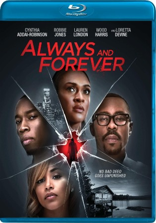 Always And Forever 2020 BluRay 350Mb Hindi Dual Audio 480p