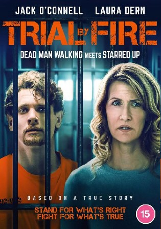 Trial By Fire 2018 WEB-DL 350Mb Hindi Dual Audio 480p
