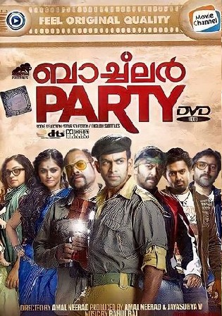 Bachelor Party 2012 HDRip 1.1GB UNCUT Hindi Dual Audio 720p Watch Online Full Movie Download bolly4u